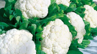 30725-Snow-Crown-Cauliflower