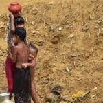 রোহিঙ্গা শিশুদের ফেরত পাঠাবে না পশ্চিমবঙ্গ